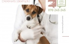 Het Belgisch Antigifcentrum heeft een openstaande betrekking voor een dierenarts.